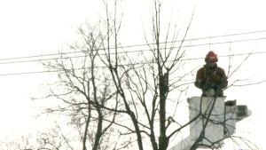 CTV Northern Ontario: Demanding answers